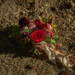 blush photography-Dan-Jill-wedding-168