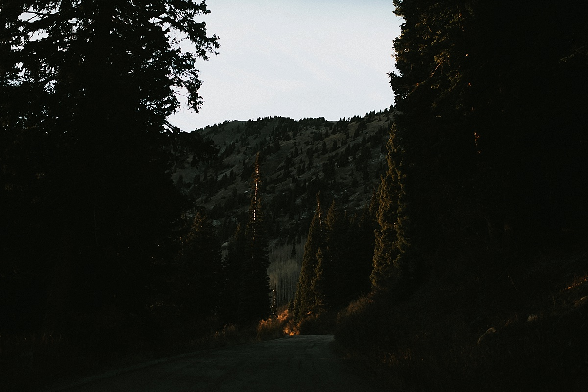 blushphotography-kj-187