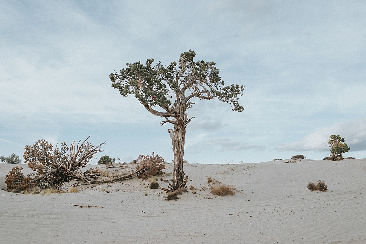 blushphotography-sanddunes-156